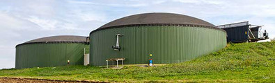 Energy, biogas and biofuels